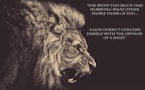 Lion Vs. Sheep